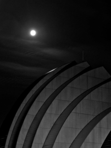 moon over kauffman shell Marcus Dowty